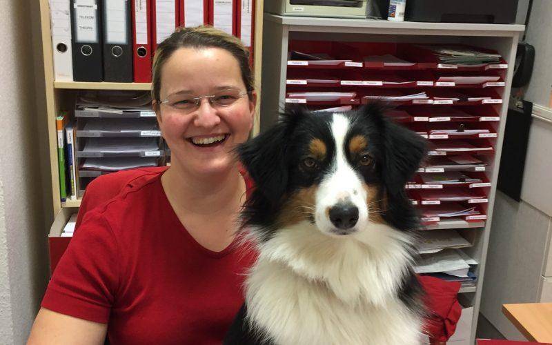 Rezeption Ergotherapie Hund